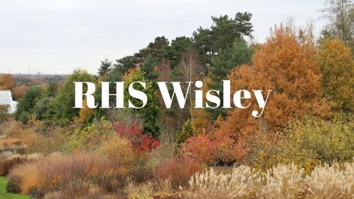 RHS Wisley iMAGE.jpg